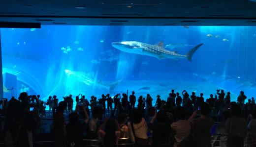 2020年 美ら海水族館の割引チケット買い方 道の駅 コンビニ スーパー それとも?